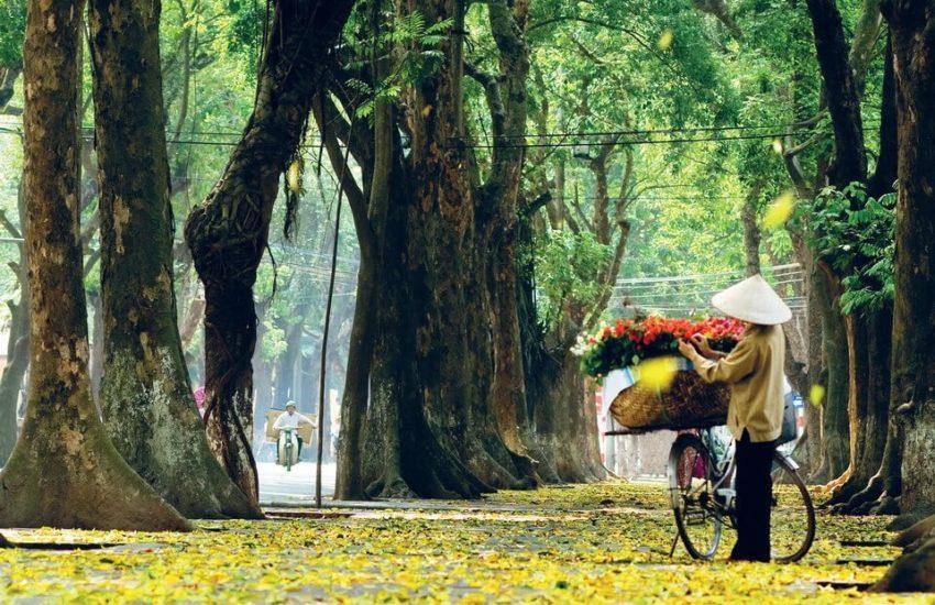 Hà Nội mùa thu2 850x550 - Hà Nội mùa thu